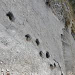 Itinerario mesozoico Lavini di Marco
