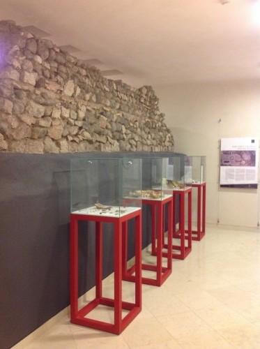 Area archeologica Palazzo Roccabruna