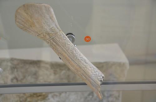 MUSE-Sezione Preistoria